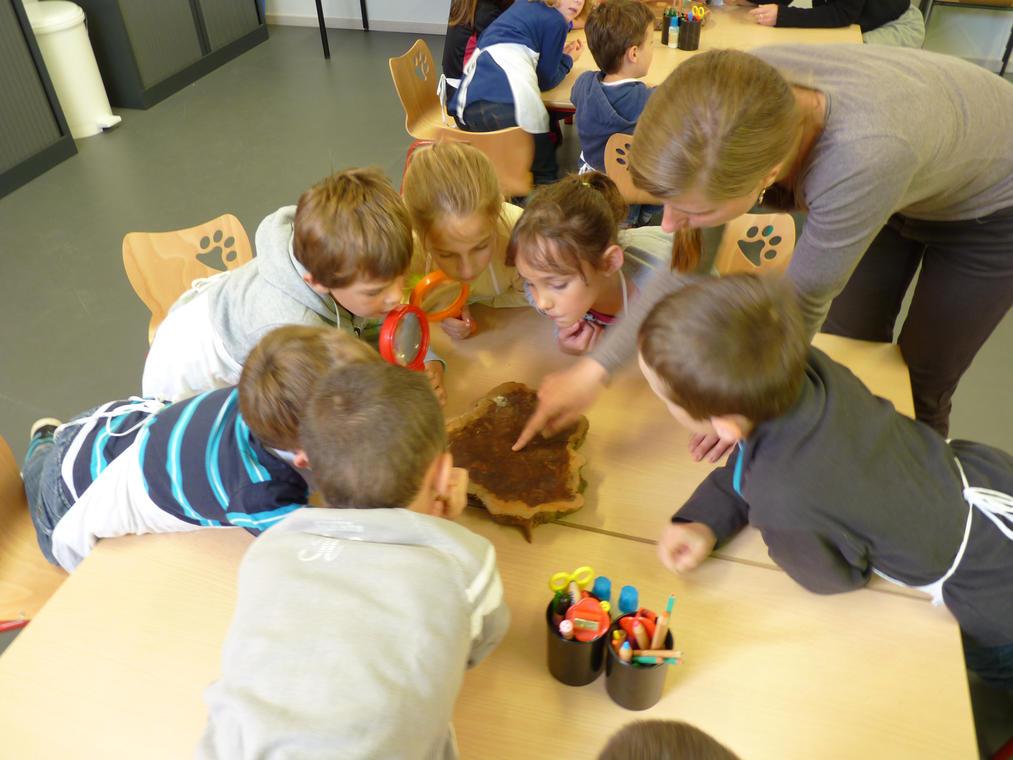 Atelier enfant Carnuta (1)
