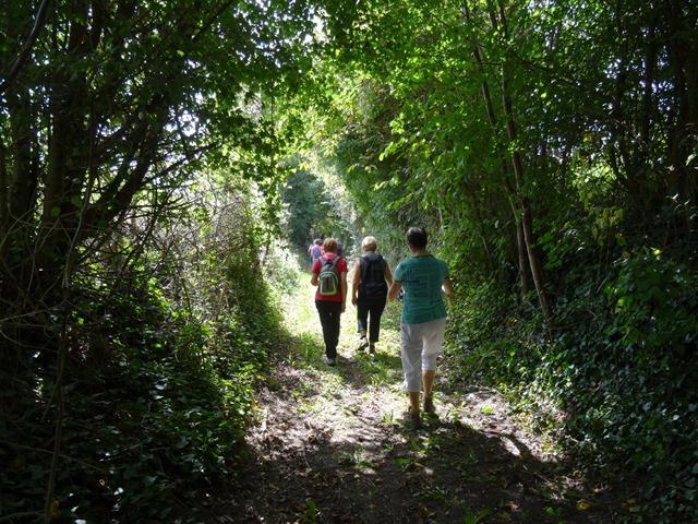 FMA49-randonnée-pédestre-baugeois-baugé-en-anjou