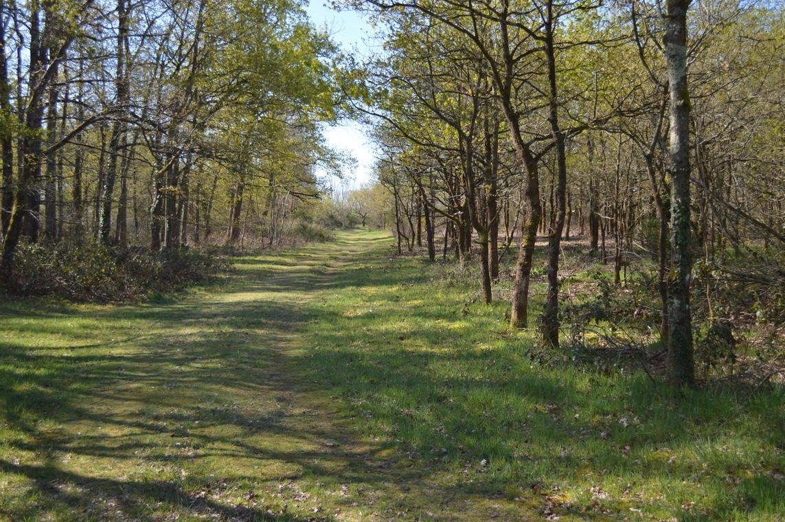 sentier site archéo aubigné racan