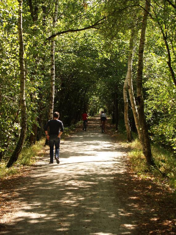 LOI49-voie-verte-2-randonnée-Baugé-en-Anjou