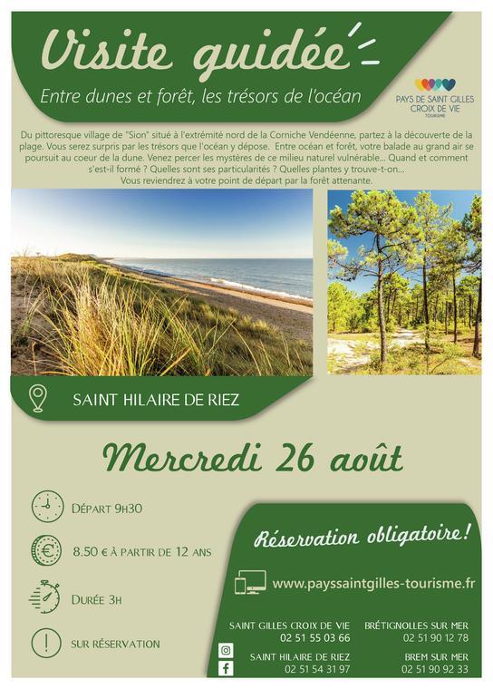 ENTRE DUNES ET FORET_26 aout - ST HILAIRE DE RIEZ