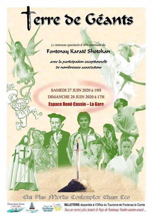 spectacle-terre-de-geant-fontenay-le-comte-85200-juin-2020-FKS-karate