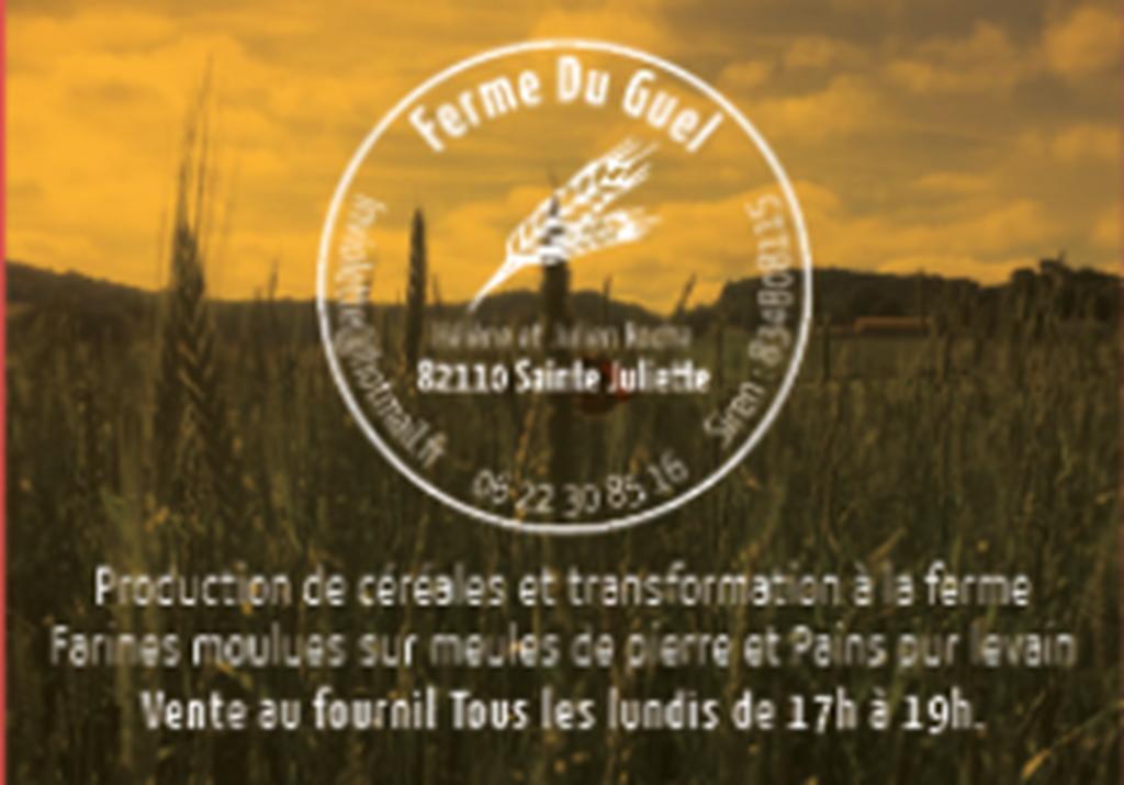 Ferme du Guel Sainte Juliette 82