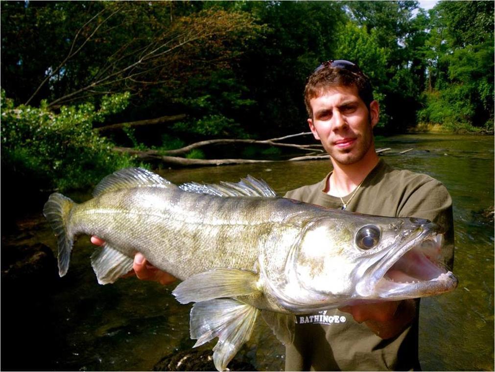Pêche no-kill en Tarn et Garonne