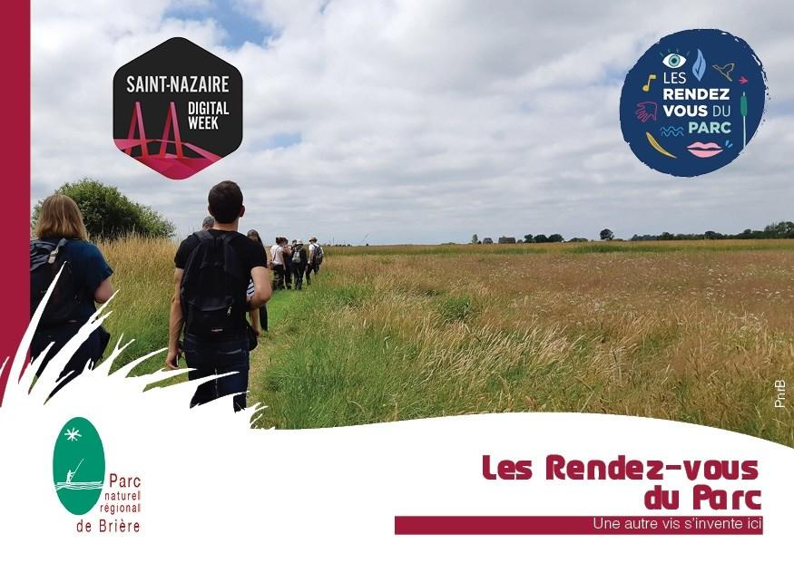 un immersion en bordure de marais
