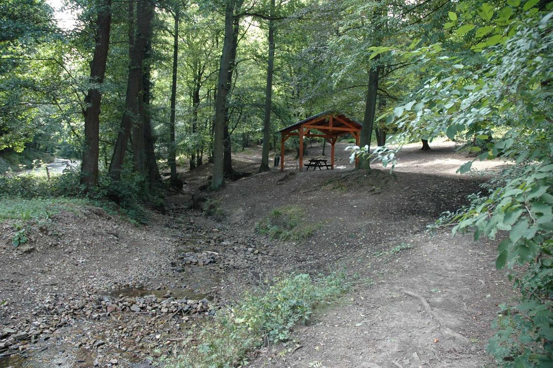 Bois de Tihange