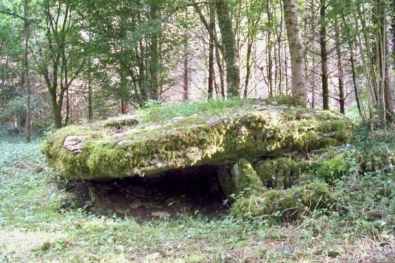 champagne 52 nogent vestiges historiques dolmen la pierre tournante mdt52.