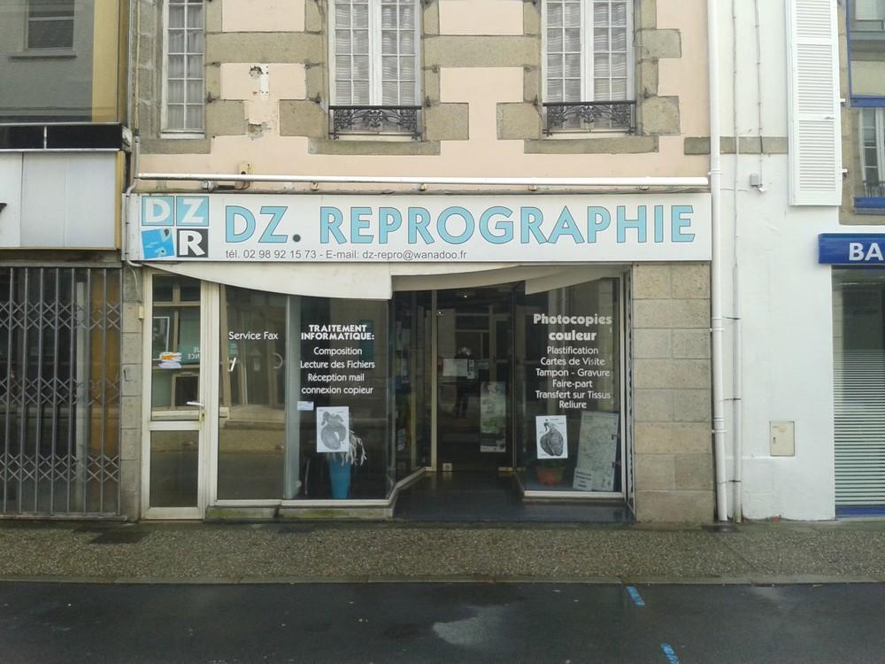 dz-repro