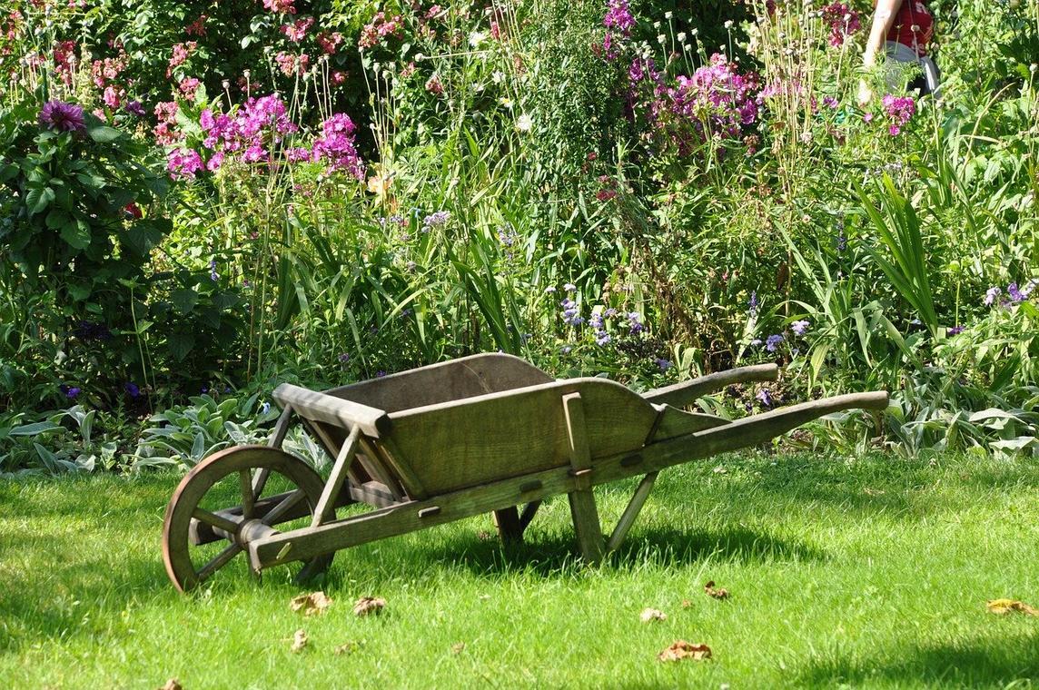 jardinage4.jpg