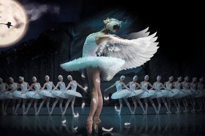 le-lac-des-cygnes-le-lac-des-cygnes-ballet-et-orchestre-Hermione-21-04-2020