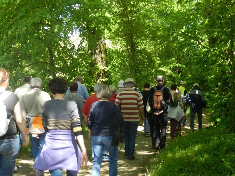 Randonnée historique W3 à Saint-Rimay