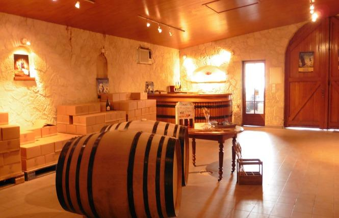 viticulteur_domaine des chezelles_noyers-sur-cher