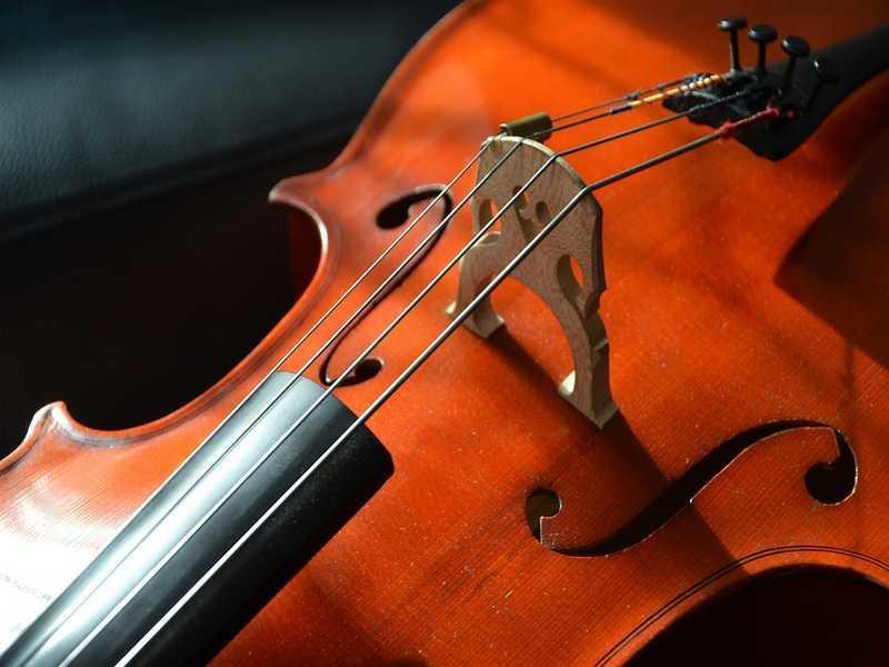 violoncelle-cordes