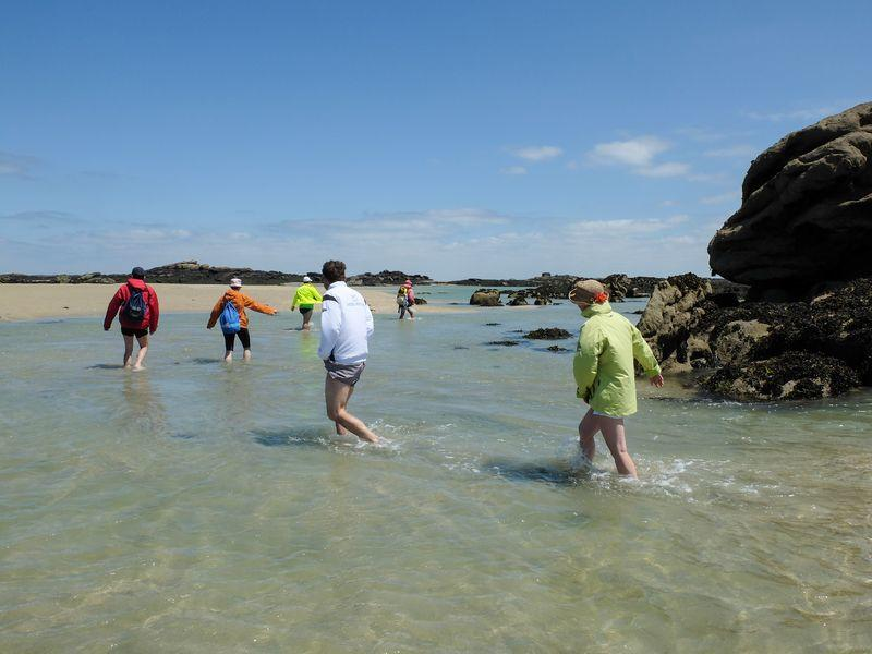 visites Chausey - Olivier Ribeyrolles