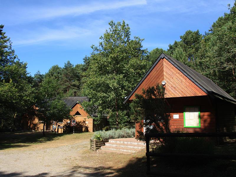 camping-de-la-Chapelle-Montligeon 800x600