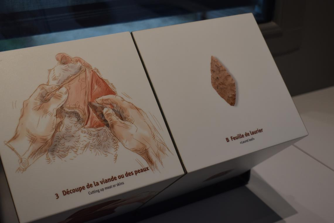 Visite sur les outils préhistoriques - Musée de Préhistoire Grottes de Saulges