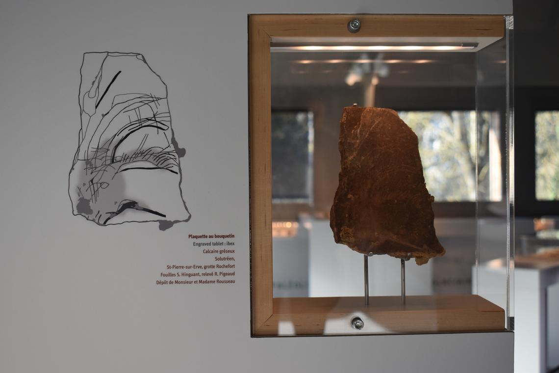 """Visite """"Des arts préhistoriques"""" - Musée de Préhistoire Grottes de Saulges"""