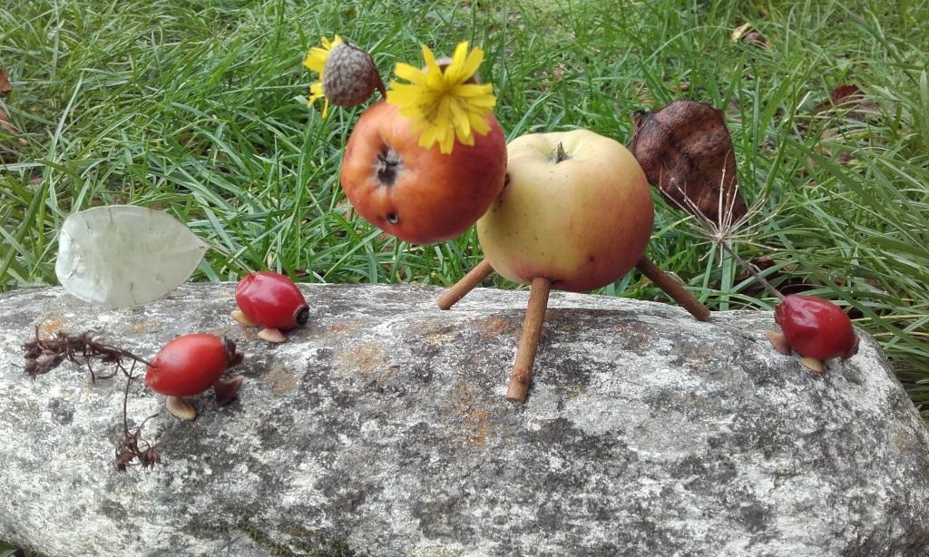 FMA53 - Sortie nature avec Marie Girard _L'arbre et la haie_