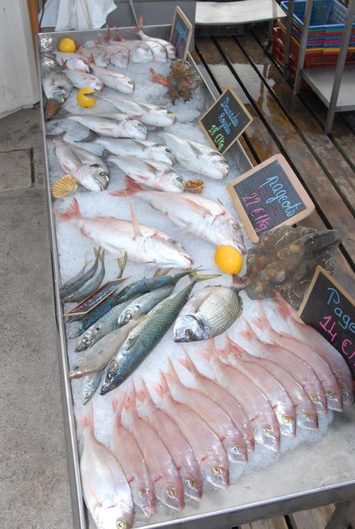 PValette08-poissons