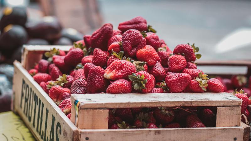fraises©johnny-martinez_unsplash