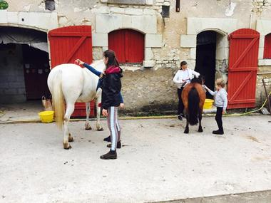 Poney_club_Centre_equestre_La_Roche_Posay_Yzeures_sur_Creuse (1).jpg
