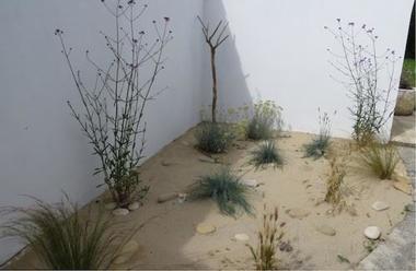 iledere-jardinpatio2.jpg