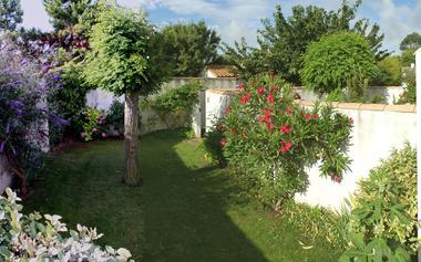 location B     jardin.jpg
