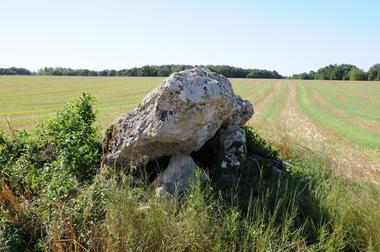 Dolmens de Villaigue - Saint Martin L'Ars ©Béatrice Guyonnet (2).JPG