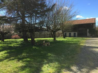 Magnolias extérieur.JPG