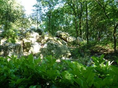 rochers-de-pyrome-moulins.JPG
