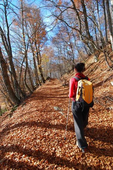 NL - Malcros automne 7036.jpg