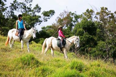 zarlor quiétude à cheval pack 3-3.jpg