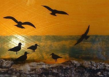 atelierdeverre-fusing-contre-jour-oiseaux-iledere-6.jpg