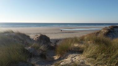 treguennec - dune - paysage - nature - janvier 2017 - eva cleret (15).jpg