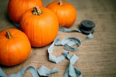 (c) Halloween Othe et Armance