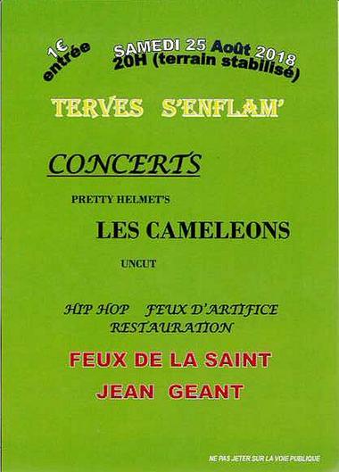 180825-terves-feu-st-jean.jpg