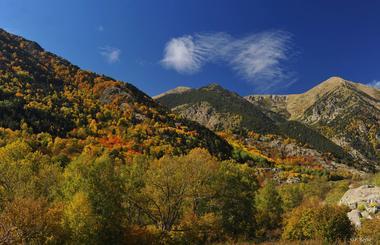 photo_CVLD1_vallée de Bouleaux à l'automne ©F Berlic.jpg