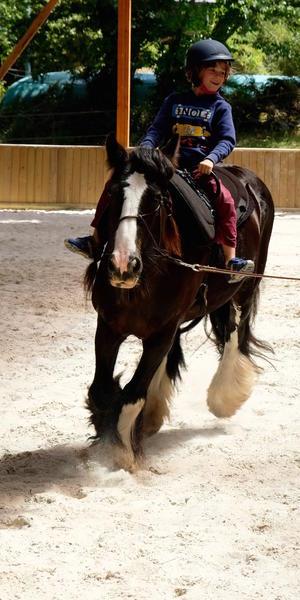 Centre_Equestre_Crinieres_Ouest_Lanvenegen (5).jpg