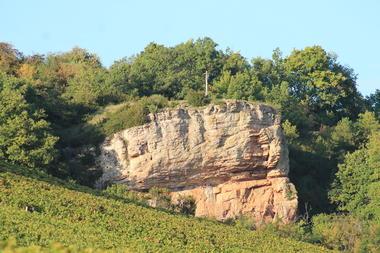 Saint-Mard-de-Vaux-falaise-radonnee-vignes-OT (3).JPG