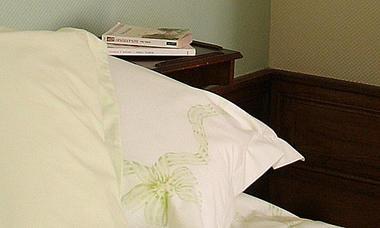 chambre_hote-_la_roche_posay_le_jardin_des_lys (3).jpg