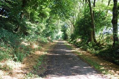 ancienne ligne chemin fer_chemin des mineurs_ferfay.jpg