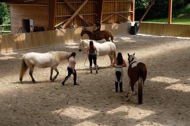 Centre_Equestre_Crinieres_Ouest_Lanvenegen (7).jpg