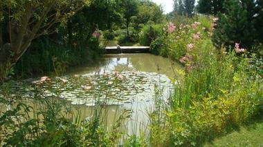 jardin bosselé3.JPG