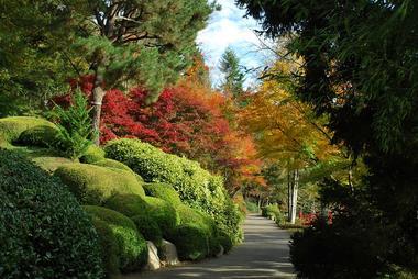 maulevrier-parc oriental-automne2.JPG