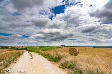 Chemin blanc en Quercy Blanc--© Lot Tourisme - C. Novello.jpg