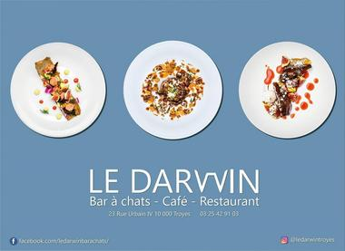 Le Darwin