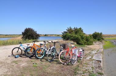 go bikes.JPG