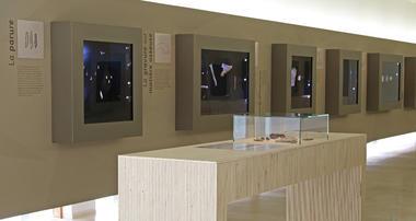 Musée de la préhistoire - LUSSAC - ©OTVG (3).jpg