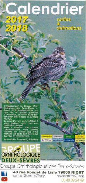 couv-groupe-ornithologie-ds.jpg