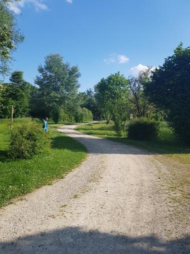 Jardins de la Clouère - Usson du Poitou ©OTVG (12).jpg